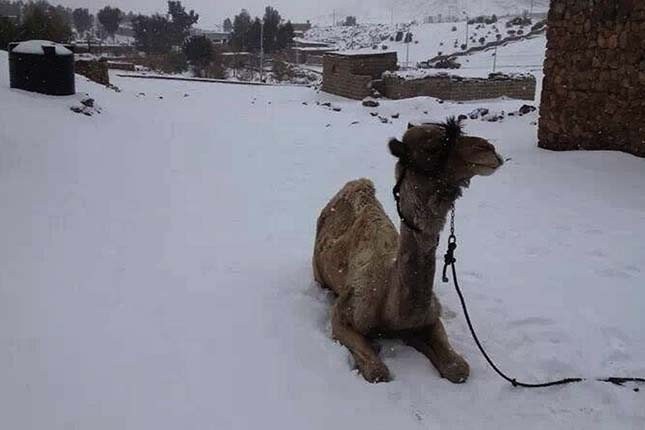 Havazás Egyiptomban