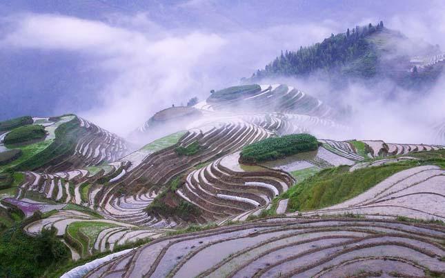 Honghe Hani rizsteraszai