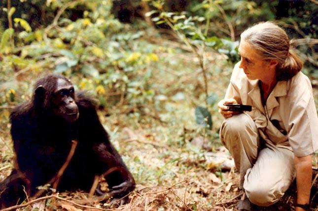 Jane Goodall Budapesten