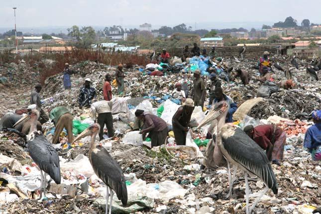 Kibera nyomornegyed