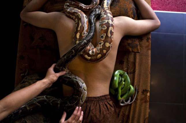 Kígyó masszázs