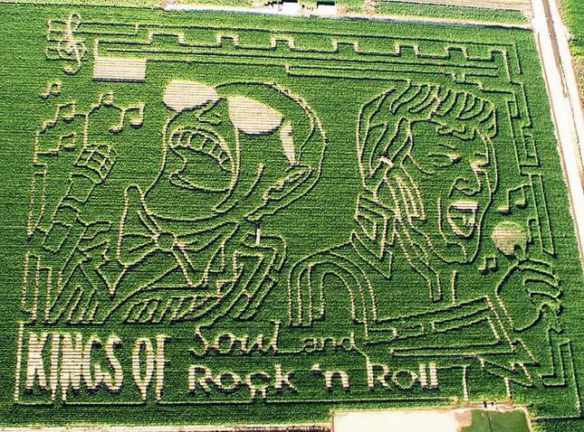Kukorica labirintusok
