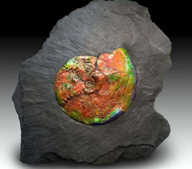 különleges ásványok