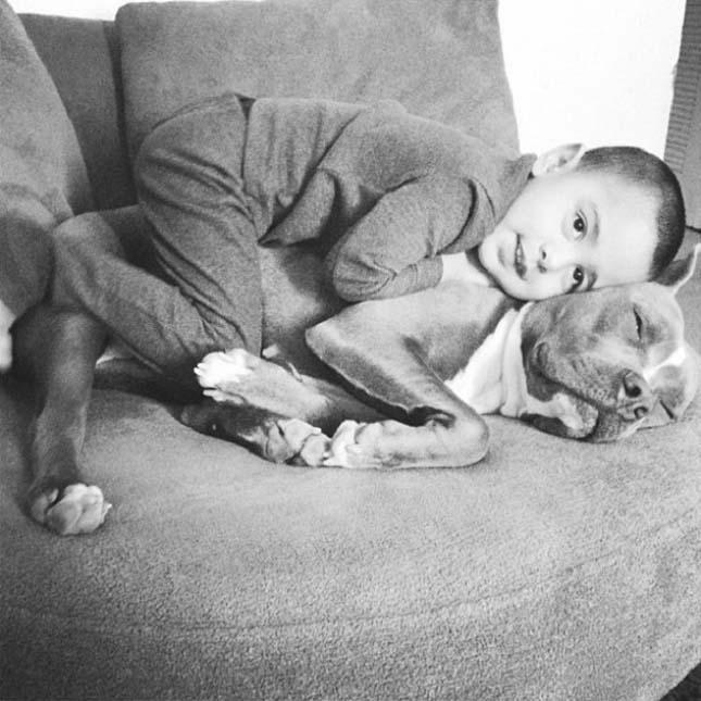Kutyák és gyerekek