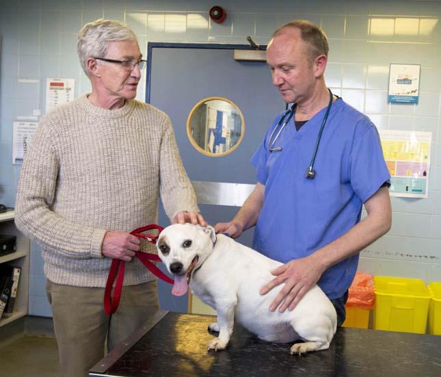 Paul O'Grady és kutyái