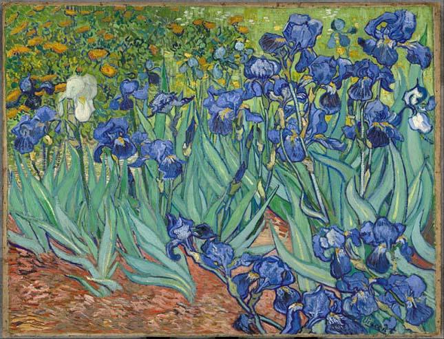 Vincent van Gogh -Íriszek