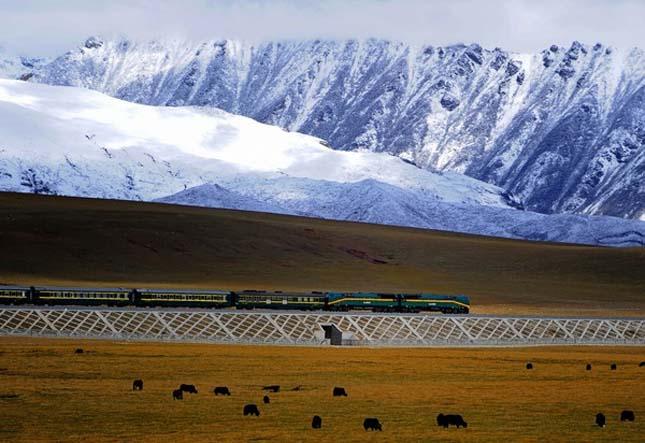 Qingzang vasútvonal