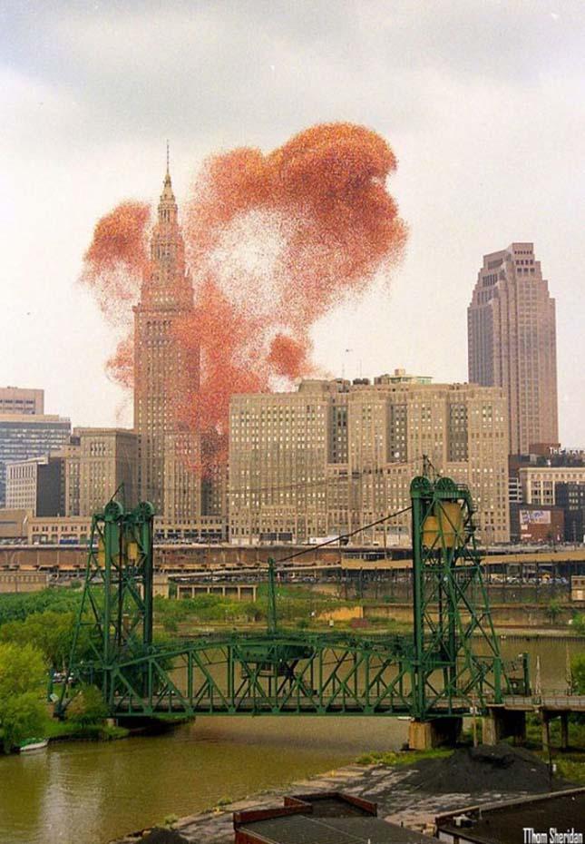 Cleveland lufi-rekord