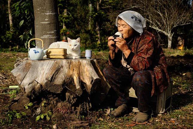 Egy nagymama és cicája mindennapjai