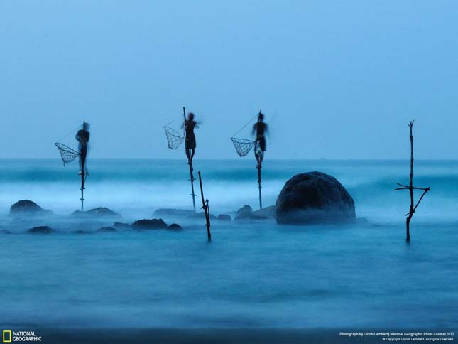 National Geographic fotóverseny
