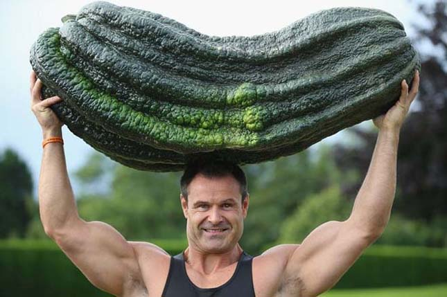 Óriás zöldségek a Harrogate-i Őszi Karneválon