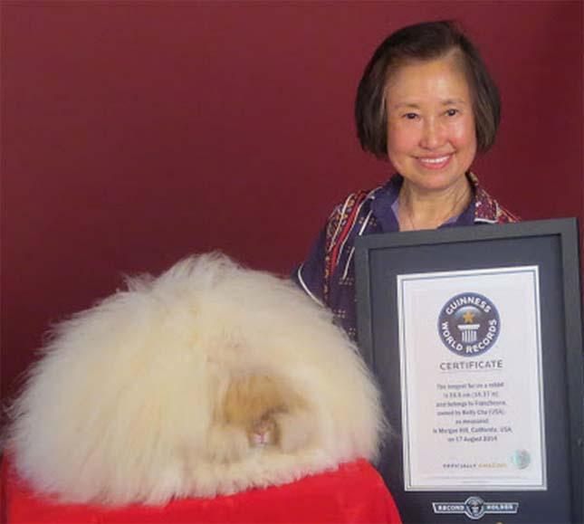 Guinness Rekordok Könyve