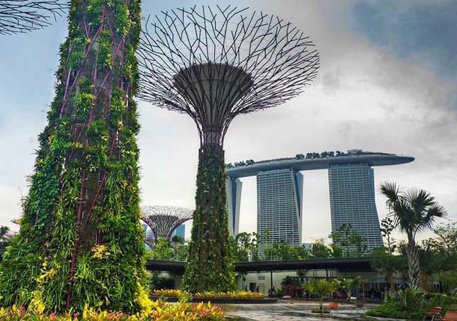 Szuperfák nőttek Szingapúrban