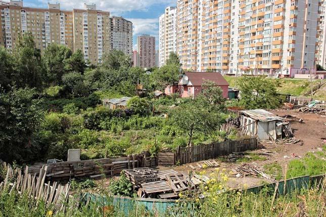 Tanya Kijev közepén