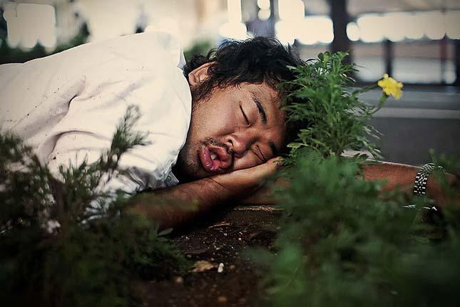 Alvó japán dolgozók