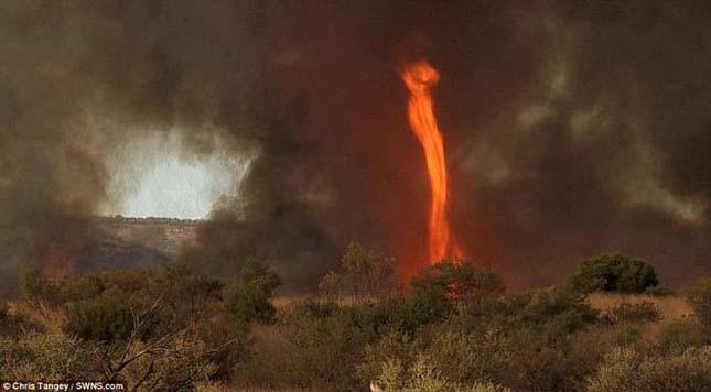 Félelmetes, mégis gyönyörű Tűz tornádók