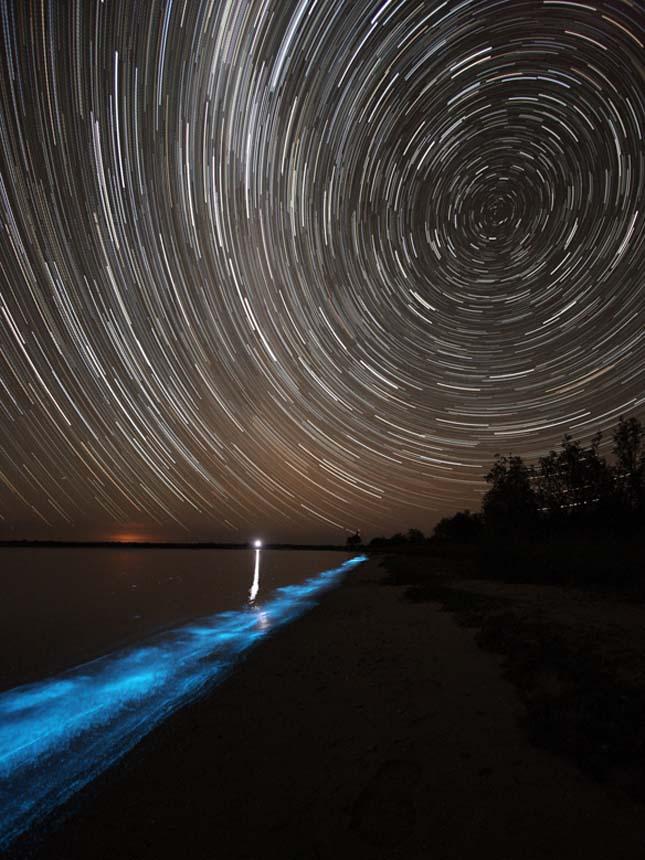 Világító tó Ausztráliában, Gippsland lake