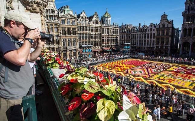 Virágszőnyeg Brüsszelben