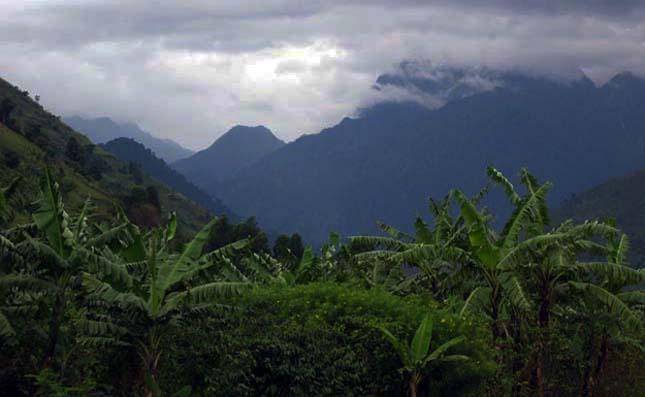 Virunga Nemzeti Park