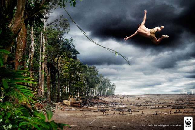WWF reklám