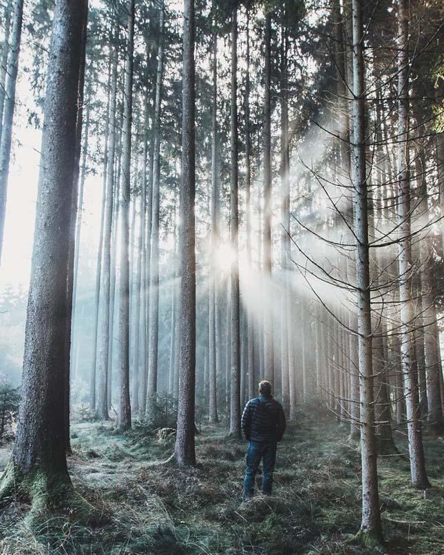 Gyönyörű képek Németországról