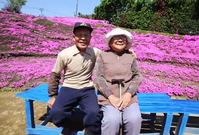 Több ezer virágot ültetett a japán férfi a feleségének