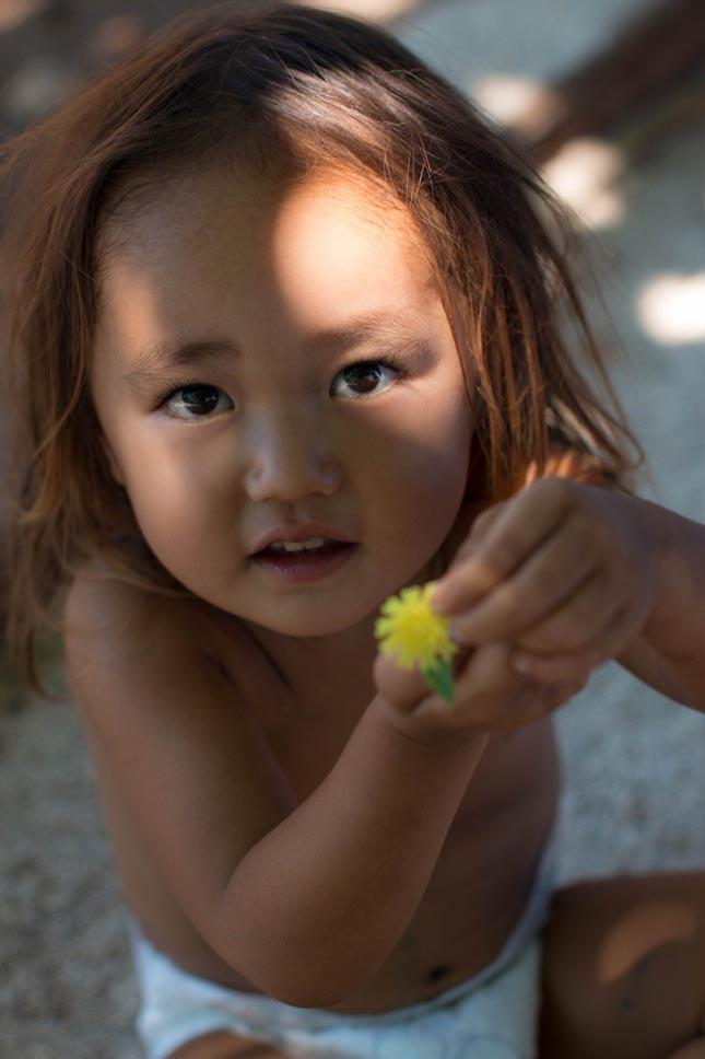 Hajláktalan család Hawaii-on