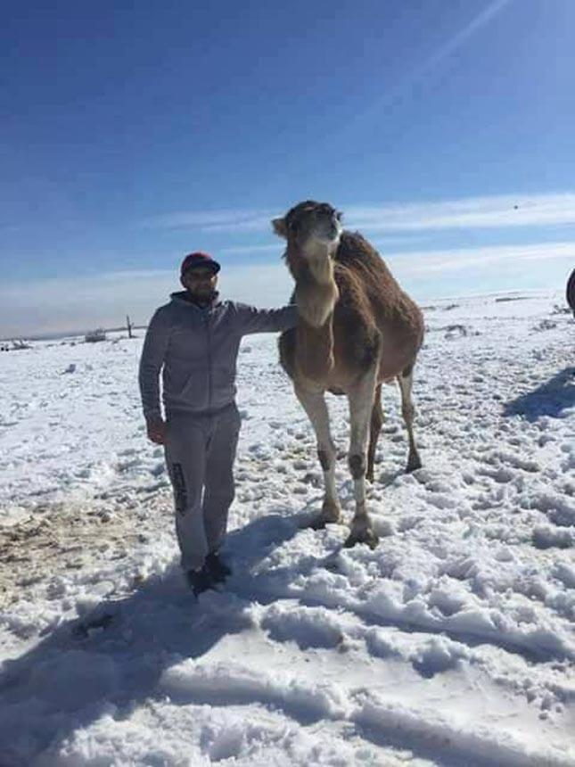 Havazás, Ain Sefra, Algéria