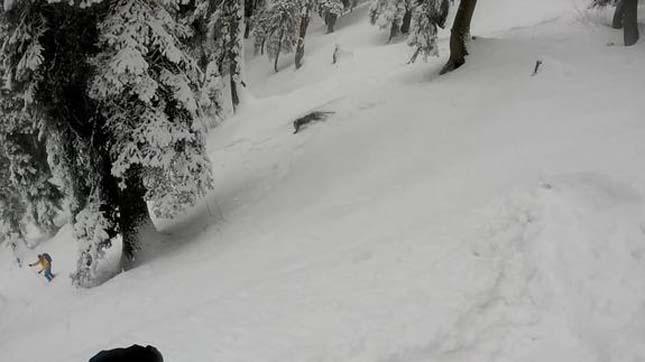 Hópárduccal találkoztak a síelők