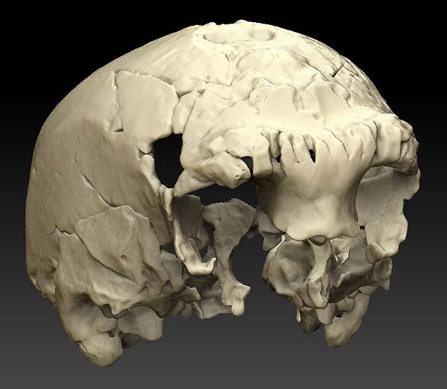 400 ezer éves koponya