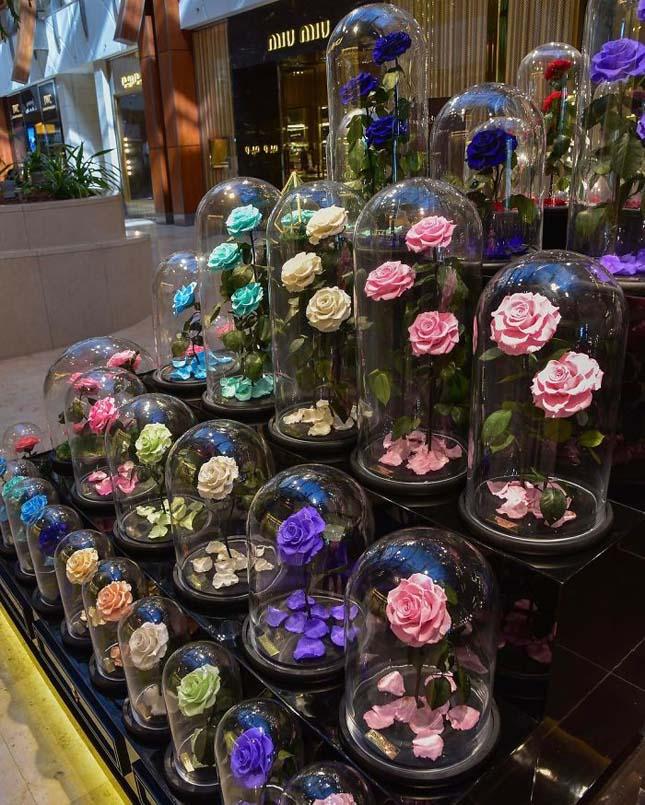 Örök rózsák