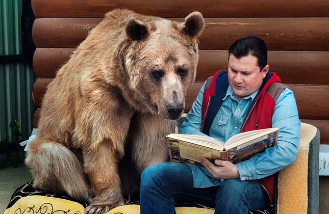 23 éveél egy családdal a szelíd medve