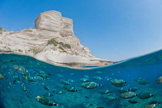 Víz alatt és a víz felett