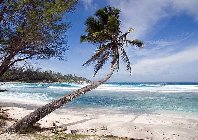 Anse Cocos Beach, Seychelle-szigetek