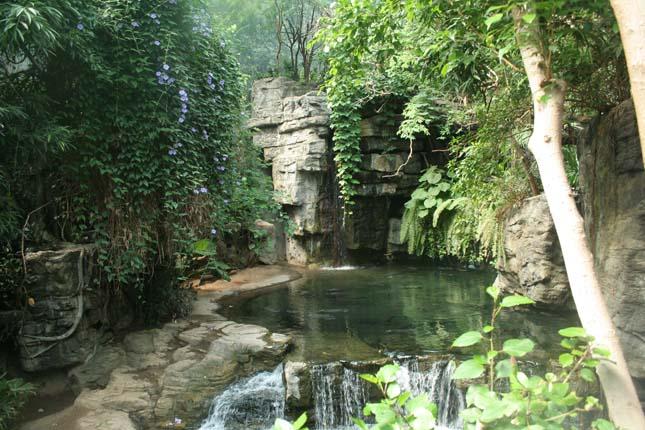 Bronx Állatkert