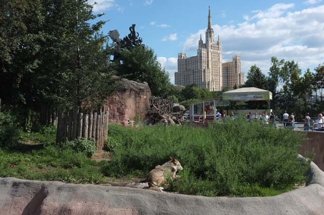 Moszkvai Állatkert