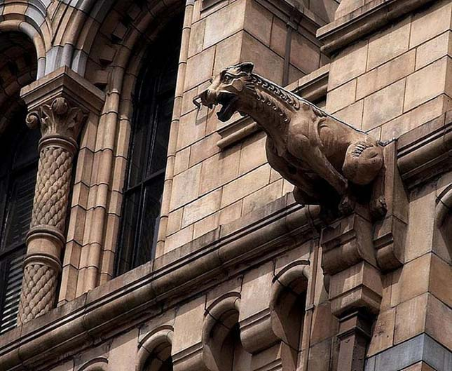 Natural History Museum - London, Anglia