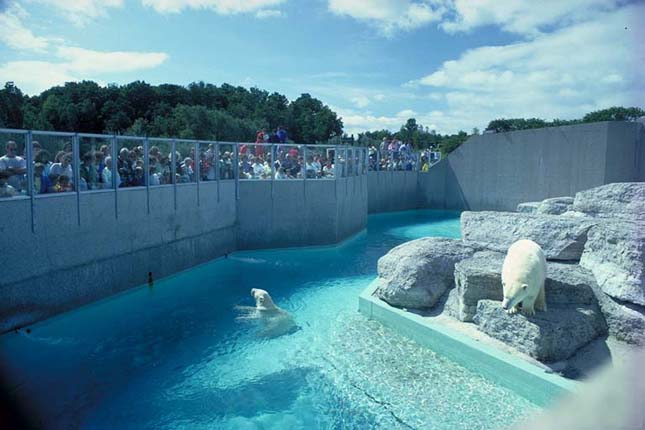 Toronto Állatkert