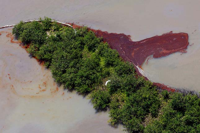 Mexikói-öbölbeli olajkatasztrófa
