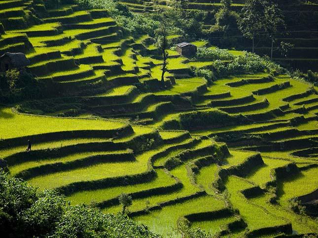 Yunnani teraszok, Kína