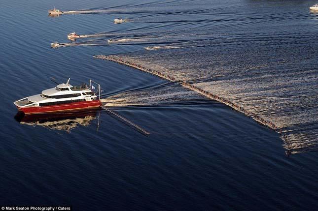 Vízisí világrekord