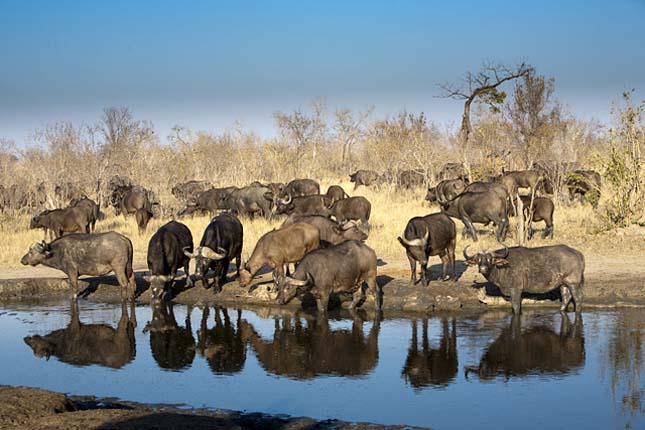 A világ legnagyobb nemzeti parkja