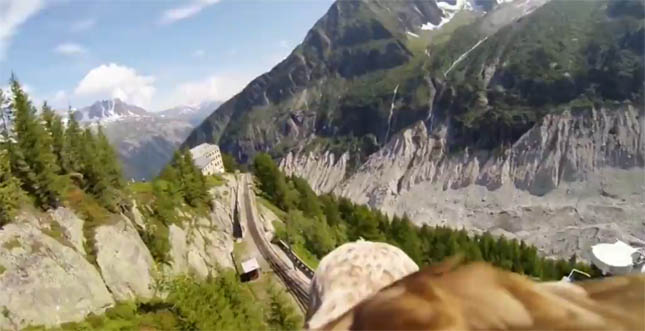 Az Alpok madártávlatból - ezt látja egy sas a magasból