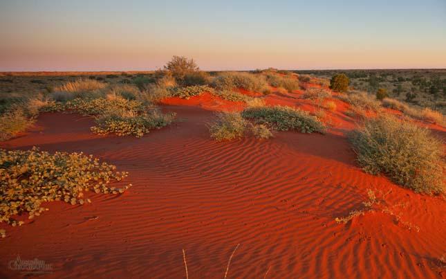 Simpson sivatag