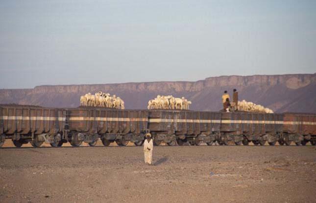 A világ leghosszabb vonata