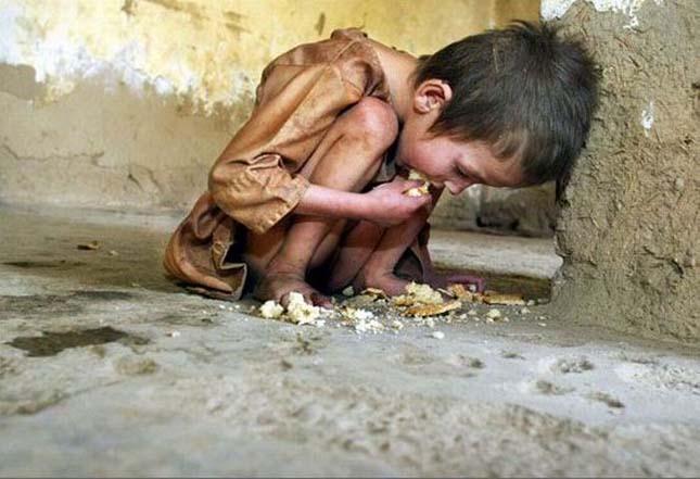 éhezés amikor javítja a krónikus