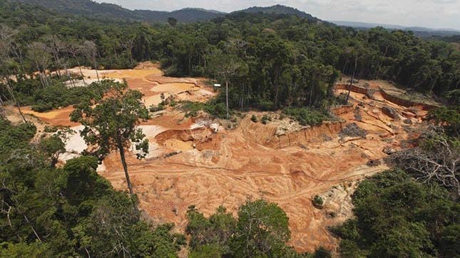 Brazil-rain-forest-deforestation