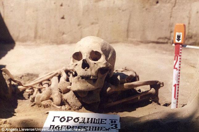csontvaz-3