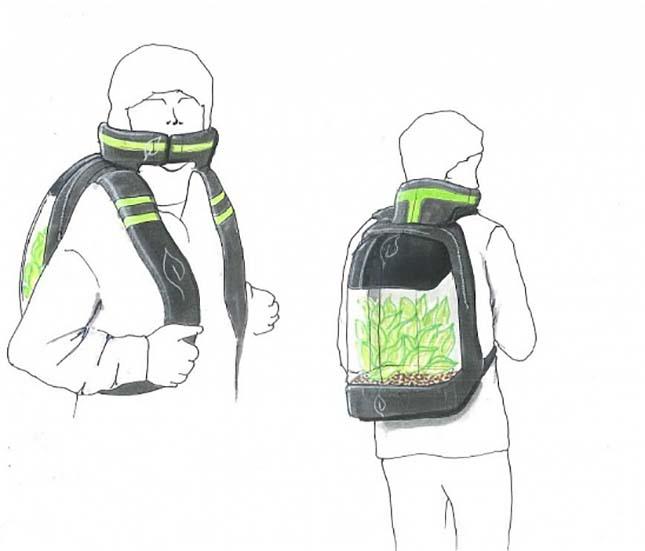 plant-bag