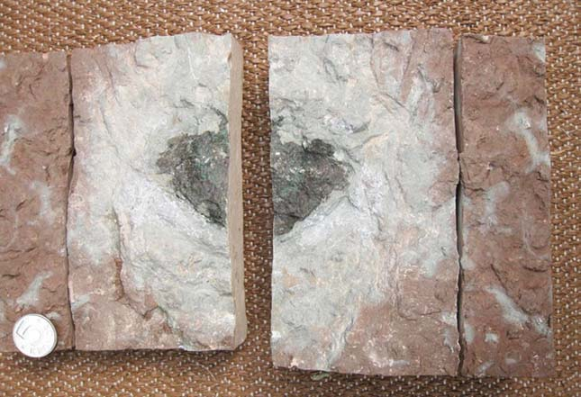 meteorit-1
